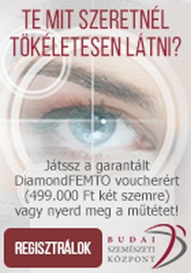 https://www.budaiszemeszet.hu/